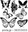 蝴蝶 蝶 ベクトルのイラスト 36353033
