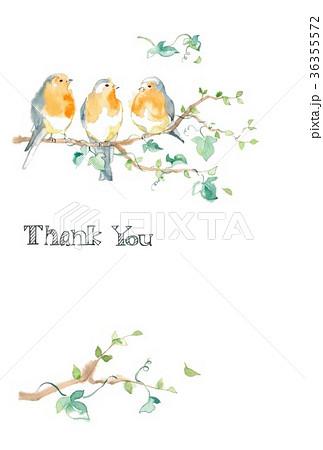 ロビンと木の葉、カード、サンキューカード 36355572
