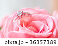 鑽戒與玫瑰 36357389