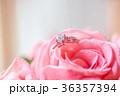 鑽戒與玫瑰 36357394
