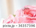 鑽戒與玫瑰 36357396