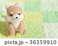 戌年 犬 戌の写真 36359910