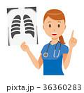 ベクター 女性 看護師のイラスト 36360283