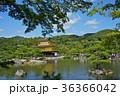 金閣寺 寺 池の写真 36366042