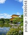 金閣寺 寺 池の写真 36366048