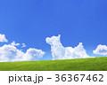 青空と犬の形の雲と草原 36367462