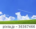 青空と犬の形の雲と草原 36367466