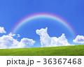 青空と犬の形の雲と草原 36367468