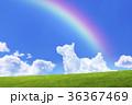 青空と犬の形の雲と草原 36367469