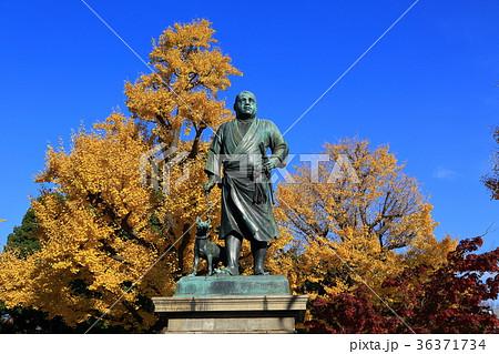 上野 西郷隆盛像 36371734