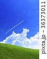 青空と犬の形の雲と草原 36373011