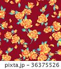薔薇 植物 花のイラスト 36375526