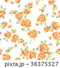 薔薇 植物 花のイラスト 36375527