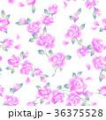 薔薇 植物 花のイラスト 36375528
