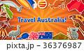 オーストラリア ベクトル こあらのイラスト 36376987