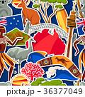 オーストラリア ベクトル こあらのイラスト 36377049