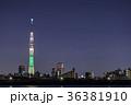 東京スカイツリー ライトアップ シャンパンツリーの写真 36381910