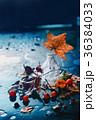 あき 秋 雨だれの写真 36384033