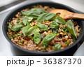 料理 (調理 豚肉 ガパオ バジル キッチン 台所 家事 IH オール電化 食べ物) 36387370