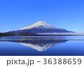 富士山 山中湖 逆さ富士の写真 36388659