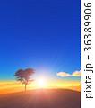 樹と日の出 36389906