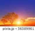 樹と日の出 36389961