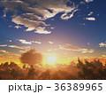 樹と日の出 36389965