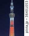 東京スカイツリー ライトアップ キャンドルツリーの写真 36401053