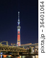 東京スカイツリー ライトアップ キャンドルツリーの写真 36401064