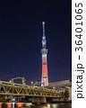 東京スカイツリー ライトアップ キャンドルツリーの写真 36401065