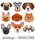ベクター 動物 犬のイラスト 36401768