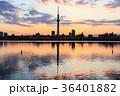 東京スカイツリー 荒川 夕焼けの写真 36401882
