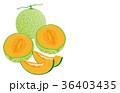 カットフルーツメロン 36403435
