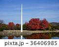 紅葉の美しい秋の岡山県総合グラウンド 36406985