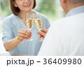 シニア 夫婦 乾杯 ワイン カップル イメージ 36409980