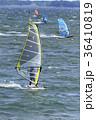 サーフィン 海 人物の写真 36410819