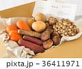 秋野菜 契約農家 宅配 産地直送 納品書 旬 秋の味覚 産直 36411971