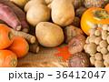 秋野菜と果物 旬 秋の味覚 芋 キノコ いろいろ 多種類 36412047
