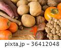 秋野菜と果物 旬 秋の味覚 芋 キノコ いろいろ 多種類 36412048