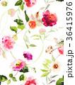 花 夏 水彩画のイラスト 36415976