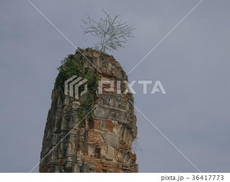 タイ アユタヤ ワット・ローカヤスターラーム 塔 36417773