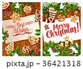 クリスマス グリーティング カードのイラスト 36421318