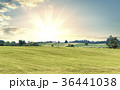 Sunrise over fields and distant woods and houses 36441038