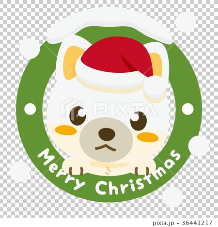 いぬっこ倶楽部 クリスマス 柴犬(白) 36441217
