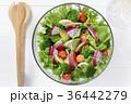 カラフルな野菜サラダ 36442279