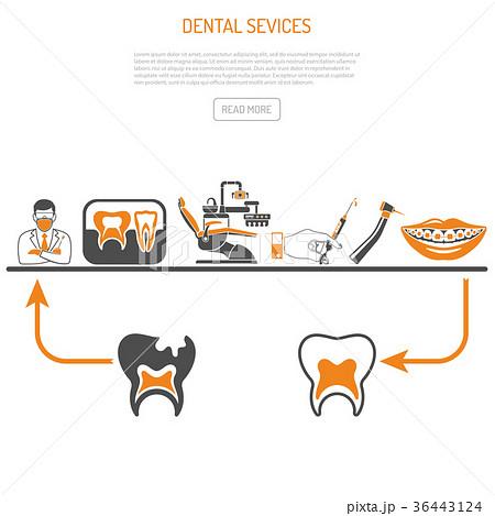 process of dentistry conceptのイラスト素材 36443124 pixta