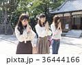 神社へお参りする女性三人組 36444166