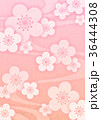 梅 春 花のイラスト 36444308