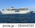 海 クルーズ 入港の写真 36444595