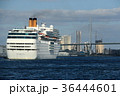 クルーズ 大阪港 入港の写真 36444601